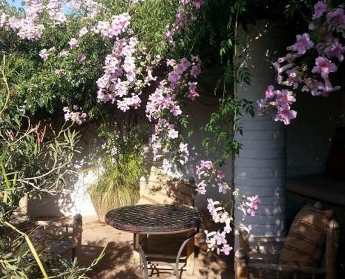 Garden of Dar Louisa, Luxury riad in Morocco