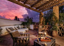 pink sunset terrace and plants